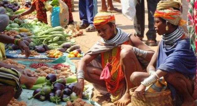 Khabar Odisha:Organic-food-will-sale-in-local-weevils-market-of-rayagada