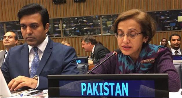 Khabar Odisha:Pakistan-is-ready-for-19th-edition-of-saarc-summit-says-Tehmina-Janjua