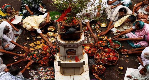 Khabar Odisha:Panchuka-kartika-month-from-today