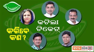 Khabar Odisha:Politics-odisha-now-5-mp-what-to-do-in-odisha-politics