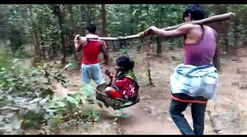 Khabar Odisha:Pregnant-woman-carried-on-cot-in-Baliguda-due-to-lack-of-road-connectivity