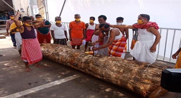 Khabar Odisha:Rath-work-started