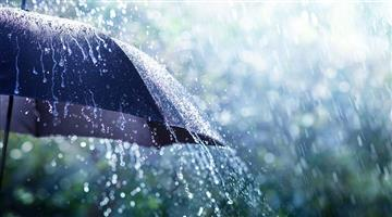 Khabar Odisha:Red-alerts-issued-in-seven-districts-with-the-possibility-of--heavy-rain-due-to-low-pressure