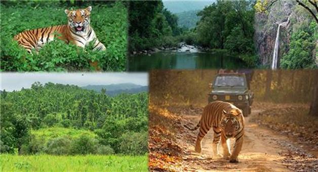 Khabar Odisha:Similipal-opened-today