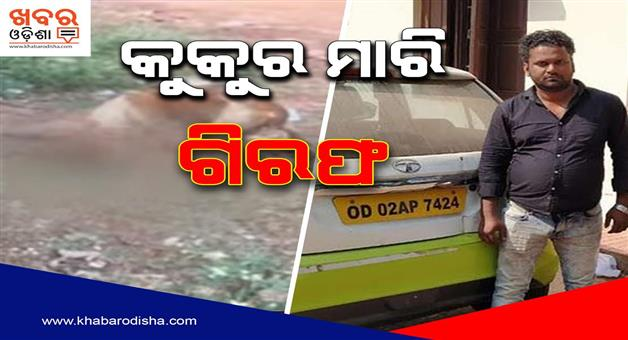 Khabar Odisha:State-Odisha-Ola-Driver-Arrested-For-Killing-4-Puppies-In-Bhubaneswar