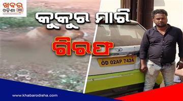 Khabar Odisha:State-Odisha-Ola-Driver-Arrested-For-Killing-4-Puppies-In-Bhubaneswar