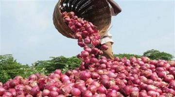 Khabar Odisha:State-Odisha-Onion-price-hike-in-Odisha