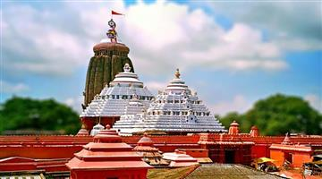 Khabar Odisha:State-Odisha-Puri-Car-festival-wood-Started
