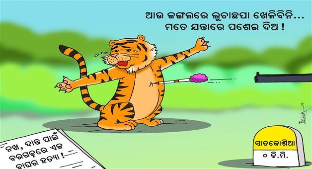 Khabar Odisha:Sundari-Cartoon-Khabar-Odisha