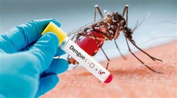 Khabar Odisha:The-spread-of-serotype-2-dengue-is-advised