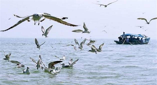Khabar Odisha:Water-aero-drum-suggestion-to-be-reviews-demand-by-BJD-MLA