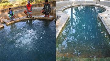 Khabar Odisha:ajab-khabar-odisha-jharkhand-bukaro-dalahi-kunda