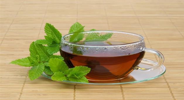 Khabar Odisha:benefit-of-pudina-tea
