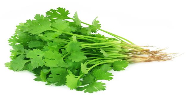 Khabar Odisha:benefits-of-coriander-leaf