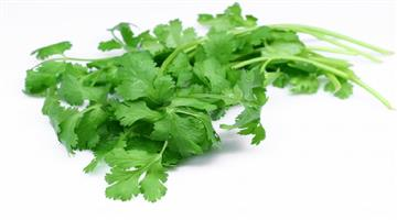Khabar Odisha:benefits-of-coriander-leafs