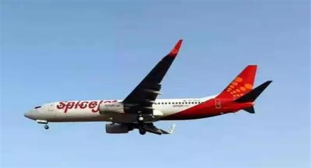 Khabar Odisha:business-odisha-spicejet-is-giving-tickets-to-people-coming-to-vote-in-delhi-for-free