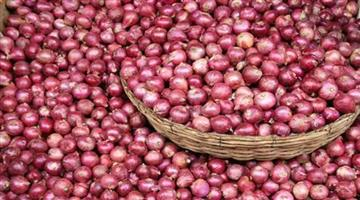 Khabar Odisha:business-odisha-state-government-not-buying-imported-onions-says-ram-vilas-paswan