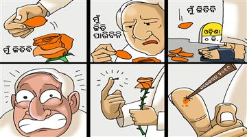 Khabar Odisha:cartoon-odisha-rose-day-of-naveen-pattanaik