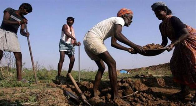Khabar Odisha:centre-and-state-fail-to-provide-even-halaf-of-100-days-employment-guarantee-under-mnrega