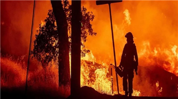 Khabar Odisha:death-toll-rises-to-23-in-california-wildfire