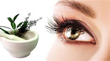 Khabar Odisha:foods-can-protect-and-improve-your-eyesight