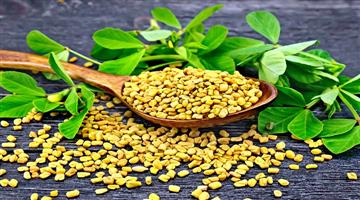 Khabar Odisha:health-odisha-benefits-of-fenugreek
