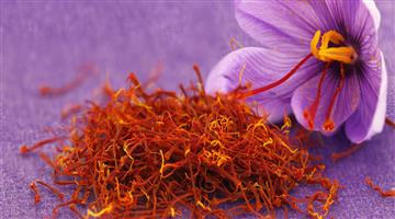 Khabar Odisha:health-odisha-benefits-of-saffron