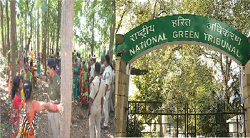 Khabar Odisha:hearing-of-cutting-tree-for-beer-factory-at-ngt-on-next-27