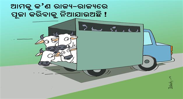 Khabar Odisha:illegal-animal-transport-cartoon-khabar-Odisha