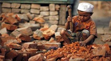 Khabar Odisha:india-has-done-significant-in-the-fight-against-child-labor