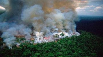 Khabar Odisha:international-odisha-amazon-fire-is-not-getting-controlled-causes-big-blow-to-international-environment