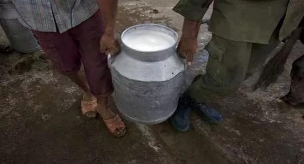 Khabar Odisha:international-odisha-at-rs-140-per-litre-milk-was-costlier-than-petrol-in-pakistan-on-muharram