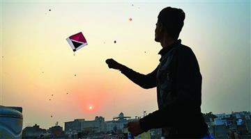 Khabar Odisha:kite-flying-in-makar-sankranti