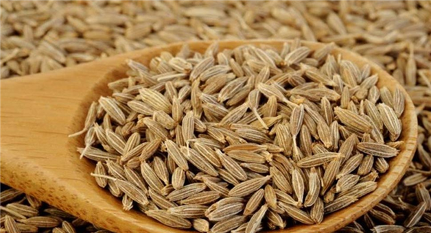 Khabar Odisha:know-the-benefits-of-eating-cumin-seeds-in-just-10-days