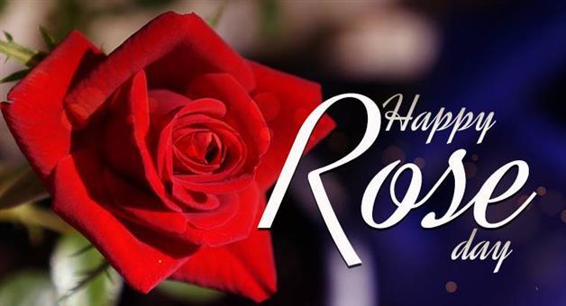 Khabar Odisha:life-style-odisha-valentine-week-special-rose-day