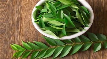 Khabar Odisha:lifestyle-Odisha-Amazing-Health-benefits-of-Curry-leaves