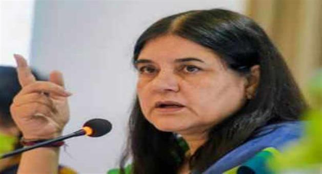 Khabar Odisha:maneka-gandhi-to-propose-4-member-panel-to-look-into-metoo-cases