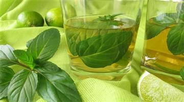 Khabar Odisha:medicine-value-of-pudina