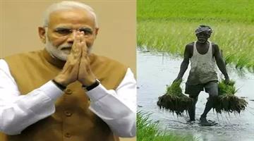 Khabar Odisha:national-odisha-Pm-Kisan-Scheme-To-Be-Rolled-Out-On-24-February-Over-1-Cr-Farmers-To-Get-Rs-2000-Each