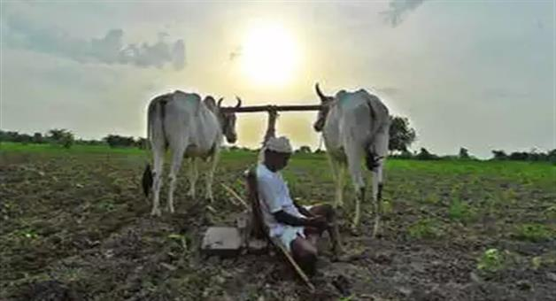 Khabar Odisha:national-odisha-farmers-will-get-fifteen-thousand-per-hactare