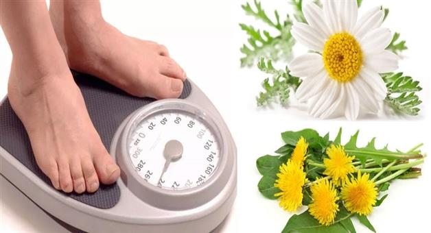 Khabar Odisha:national-odisha-with-the-help-of-these-drugs-you-can-easily-increase-your-weight