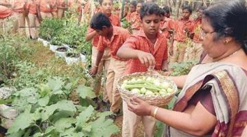 Khabar Odisha:organic-family-at-school-Chandigarh-show-the-way