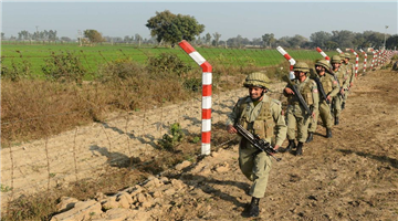 Khabar Odisha:pakistani-intruder-was-shot-dead-by-bsf-at-international-border-in-punjab