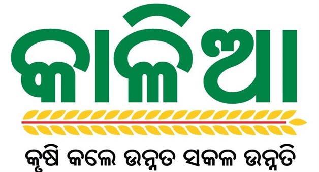 Khabar Odisha:politics-kalia-yojana-farmer-account
