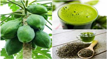 Khabar Odisha:raw-papaya-helps-to-weight-loss
