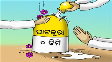 Khabar Odisha:state-odisha-cartoon-patkura-election