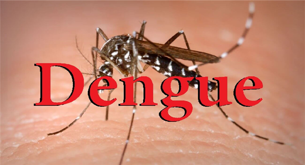 Khabar Odisha:state-odisha-dengue-in-sundergarh-52-affected