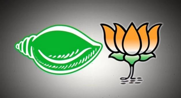 Khabar Odisha:state-politics-odisha-patkura-election-bjd-in-lead